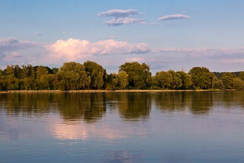 Blick über die Donau bei Bogen, Donau, Bayern, Deutschland