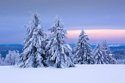 Winterlandschaft am Kahlen Asten nahe Winterberg, Sauerland, Nordrhein-Westfalen, Deutschland