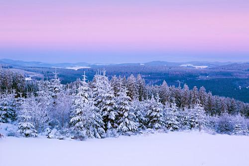 Winterlandschaft am Hohen Hagen nahe Winterberg, Sauerland, Nordrhein-Westfalen, Deutschland