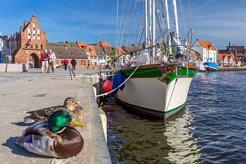 Alter Hafen in Wismar, links Wassertor, Wismar, Mecklenburg-Vorpommern, Deutschland