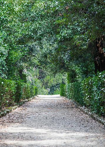 Weg in den Boboli Gärten in Florenz, Italien