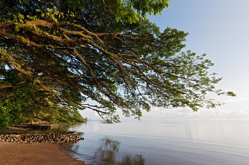 Beach at Kimbe Bay, New Britain, Papua New Guinea
