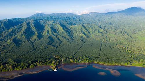 Walindi Plantation Resort, Kimbe Bay, New Britain, Papua New Guinea