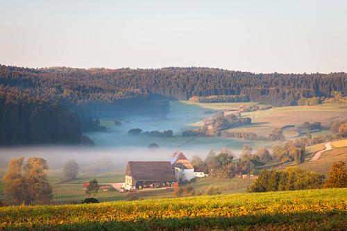 Bauernhof im herbstlichen Morgennebel, Schwarzwald, Baden Württemberg, Deutschland