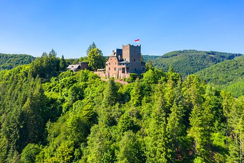 Luftaufnahme der Burg Arras bei Alf, Mosel, Rheinland-Pfalz, Deutschland