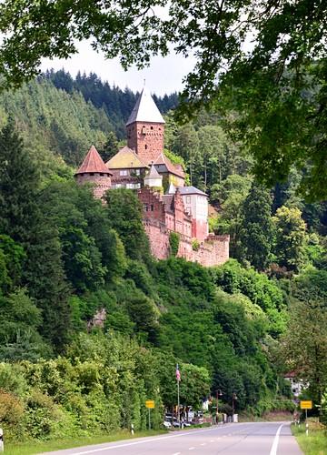 Burg Zwingenberg im Neckartal, Straße, Landstraße, Wald, Baden-Württemberg, Deutschland