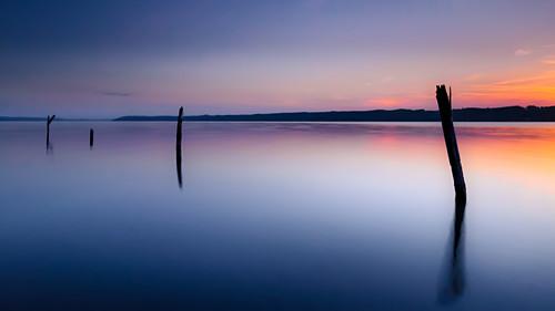 Totholz bei Sonnenaufgang im Starnberger See, Bayern, Deutschland