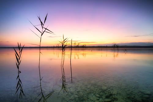 Sonnenaufgang am Starnberger See, Bayern, Deutschland