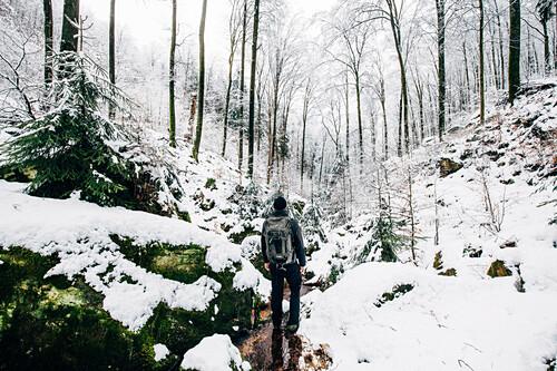 Ein Wanderer steht im verschneiten Pfälzerwald, Annweiler, Pfälzer Wald, Rheinland-Pfalz, Deutschland