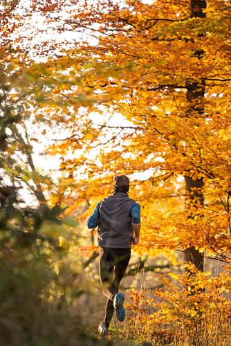 Junger Mann rennt durch einen herbstlich bunten Wald, Allgäu, Bayern, Deutschland
