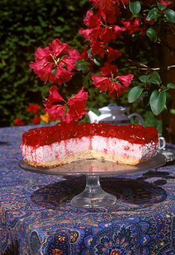Raspberry yoghurt cream gateau