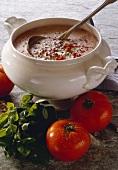 Summer Vegetable Soup in Tureen