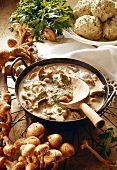 Mushroom Sauce with Honey Agaric