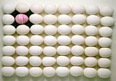 Viele Eier geometrisch angeordnet, eines bemalt auf Rasen