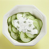 Cucumber salad; yoghurt and dill