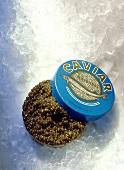 Geöffnete Kaviardose auf Eis