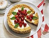 Cream cheesecake