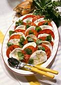 Insalata caprese (tomatoes and mozzarella), Italy