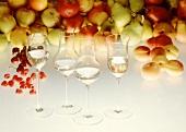 Gläser mit Obstler