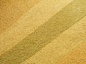 Assorted Kinds of Grains