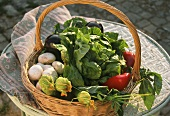 Shopping basket with fresh vegetables and salad