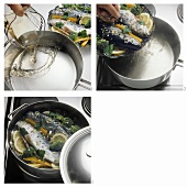 Steaming trout