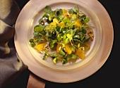 Watercress Salad with Oranges