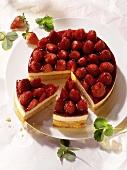 Strawberry gateau with mascarpone cream