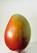 A Single Whole Mango