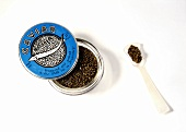 A can of caviar