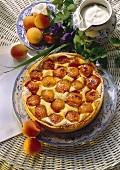 Apricot tart with quark