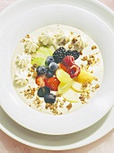 Cold Yogurt Soup with Fruit