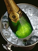 Bottle of Champagne in a Champagne Cooler