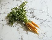 Carrots with tops on marble slab