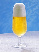 A Cold Glass of Beer; Foam
