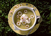 Cold Potato Soup with Daisies