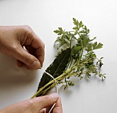 Tying bunches of herbs