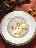 Creamed mushroom soup