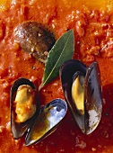 Blue Mussels in Tomato Sauce