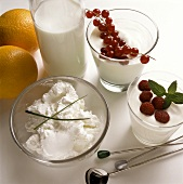 Milk Products for the Slimming Diet