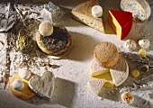 Still Life of Assorted Cheeses