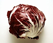 A Whole Head of Radicchio