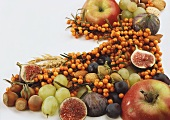 Apples; sea buckthorn berries; figs; nuts and grapes