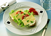 Open Cheese Sandwich with Tomatoes & Onions