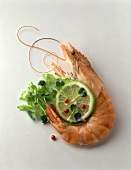 Large Prawn with Lime Garnish