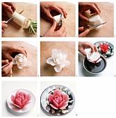 Radish rose
