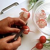 Making radish flowers