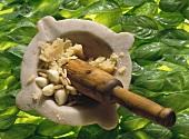 Ingredients for pesto in stone mortar