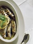 Sarde a beccafico (stuffed sardines), Sicily, Italy