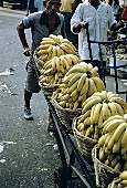 Bananas in Baskets on a Cart